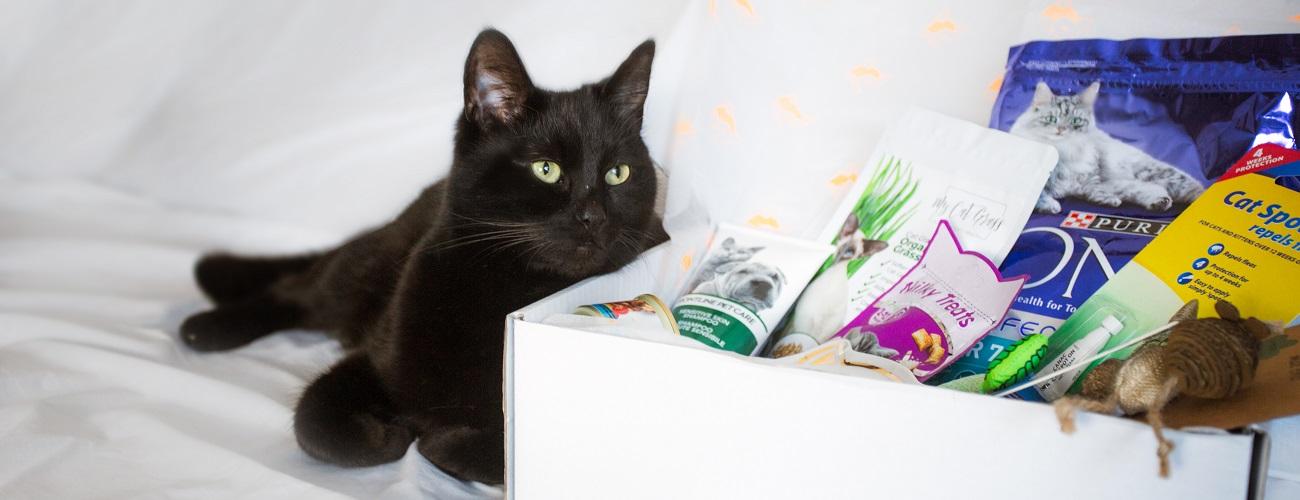 Kai loves his customised Cat Gift Box